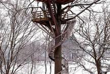 Tree house / Fantastic house
