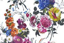 Fabric / Curtain fabric ideas
