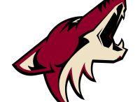 Arizona Coyotes / Official NHL Apparel for the Arizona Coyotes. T-Shirts, Sweaters, and more featuring the team's top stars.