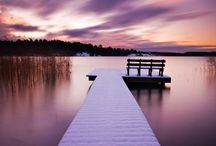 Swedish / by Steve Stenberg
