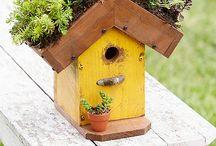 Bird houses  / by April Leigh Smeraldo