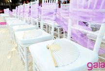 Chairs & Tables / Choose a variety of chairs and tables for your event