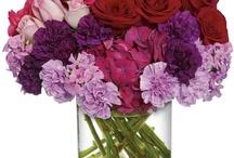 Floral Beauty
