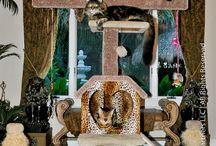 Posh Pets / by Denise Vierra