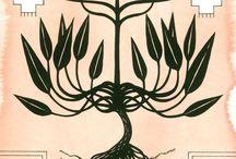 Plantas dibujos