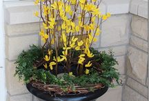 Spring decorating ideas / by Judy Henriques-Evans