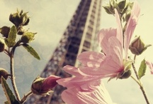 Paris - the city of my dreams