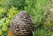 Bee skep / Bienenkorb