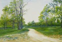Landscape,nature