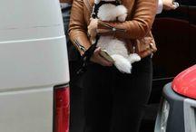 Demi and Animals