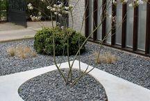 Garden: Modern