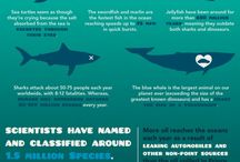 Infographics / by Center4SurfResearch