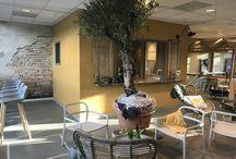 Our new office in Alkmaar