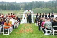 Wedding Arches At Fireseed / Arches couples have brought in or are natural at Fireseed Catering