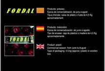Jaume Marra Poch / Cooperativa de Fruita de Sant Sadurní d'Anoia