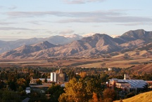 For The Love of Montana / Places, buildings, great outdoors, etc. of the place we call home, Montana!