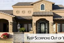 About Us / Learn more about the team at Seal Out Scorpions in Tempe, Arizona.