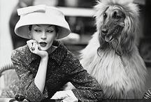 fashion stuff. / by Maria Gabriela Suero