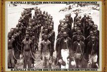 White Australian History
