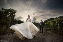 Casa virginia -Bergamo-www.ciaksposi.com-#weddingphotographer#ciaksposi#fotografomatrimoni# / Incantevoli matrimonio nelle colline bergamasche tra i vigneti ed i profumi della natura
