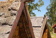 vikings lifestyle