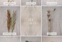 Растения /  Flowers and trees