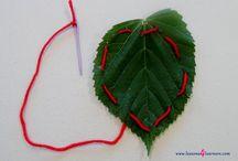 Leaf Lesson Plans