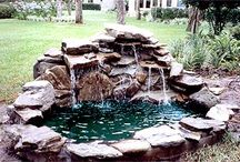Water Feature- PONDS / by Sandra Copely