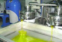 Olivenöl und Qualität / Wie erkenne ich gutes Olivenöl? Gibt es Pestizidbelastung und Fälschungen?