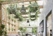 Indoor green space