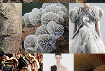 Moodboard - H&M colors