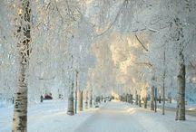 Let It Snow :) / by Rianna Tonn