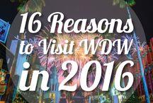 Everything Disney, Universal Studios &  Orlando