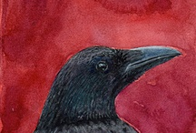 Raven Mad for Birds / by Heather DeViveiros