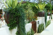 Landscape Ideas / Garden makeovers