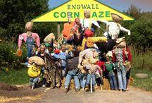 Corn Maze / Fun corn maze ideas