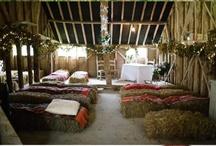 farm ideas / by Viva Wedding Photography