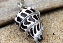 jewelery from shells