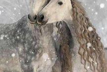 Winter is here! / De feestdagen komen er weer aan. Tijd voor dikke truien, kaarsjes een knapperend haardvuur en goed gezelschap!