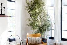 Groza Living Room