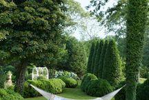 Garden & veranda