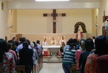 Festa de São Pio X - 2012
