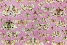 Homes: Wallpaper