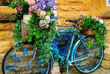 biciclete si flori