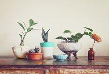 // Feuillages et Plantes
