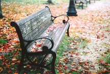 Benches / I have a thing for benches / by Mariah Mae