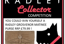 Radley Collector Competitions / Radley Collector competition ! Radley Collector give away fantastic prizes for Radley fans !