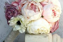 Des pivoines pour mon mariage / Peonies for my wedding