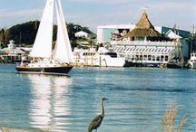 Travel *Florida*