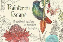 Rainforest Escape CBook